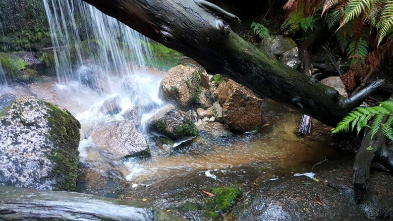 Falls Rocks